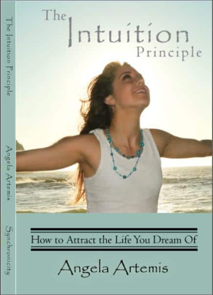 The Intuition Principle final approved cover