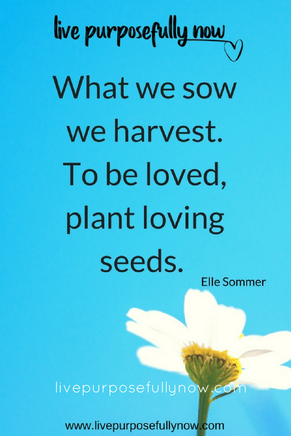 harvest what we sow