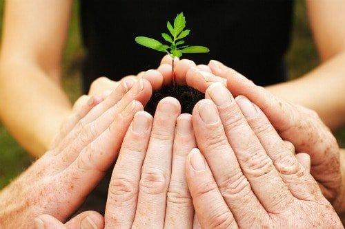 bigstock-Growing-With-Teamwork-4188106