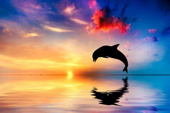 bigstock-Beautiful-calm-ocean-at-sunset-43459639