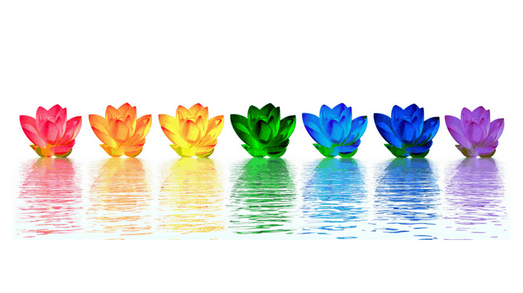 What's Your Dominant Chakra And Why It's Good to Know!