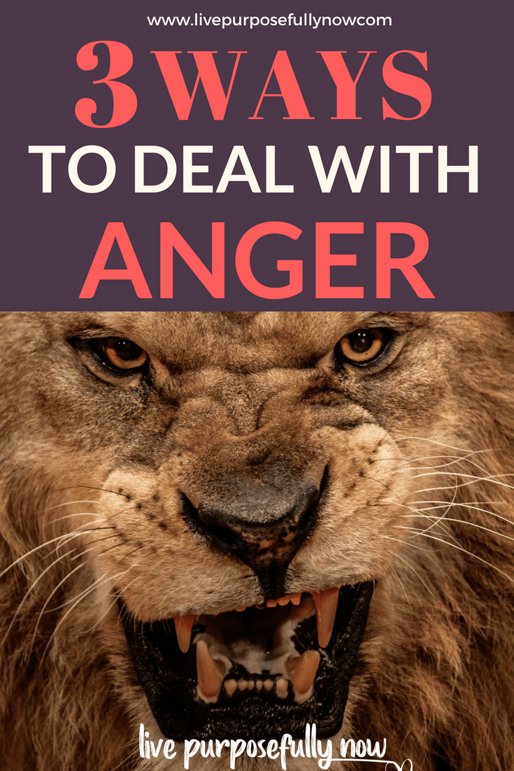 An easy to read guide, that will help you learn how to use your mind to remain calm and stay positive whenever you're angry or in a negative mood.|Life Lessons| Deep Life Quotes| #inspirationalquotes #motivationalquotes  #mindset #livepurposefullynow
