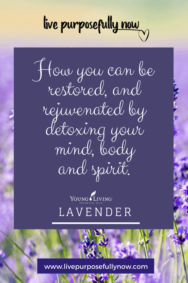 Restore balance in life by detoxing your mind body and spirit.