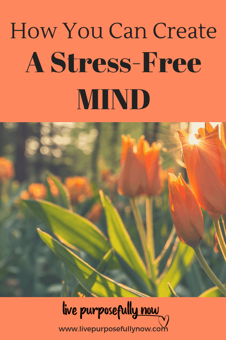 Some simple ways you can have a happy, harmonious life, a healthy body and a peaceful sense of wellbeing by creating a stress-free mind.