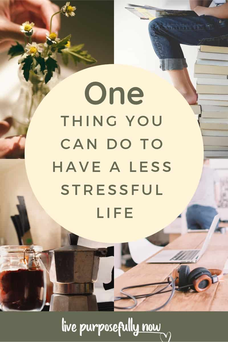 When you find yourself worked up, stressed out, or just feeling stuck here's one thing you can do to have a less stressful life. #inspirational #motivational #selfimprovementblogs #successblogs #selfcare #selflove #selfhelp #selfesteem #selfconfidence #prosperity #love #lettinggo #inspiration #lifequotes