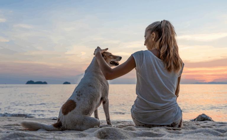 woman-dog-beach-brilliant-life